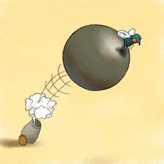 WDIDN? Killing a Fly With a Cannonball! Artwork