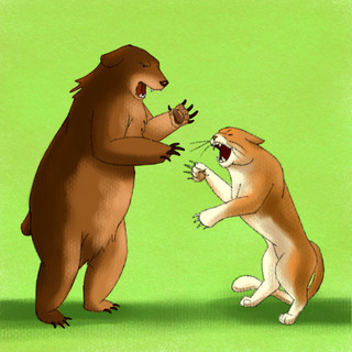 Wilderness Medicine 101 - Bear Attacks Artwork